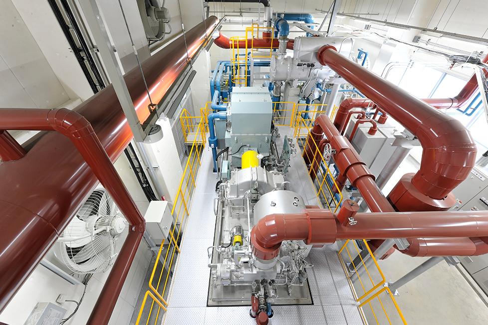 locus_img_energy-plant